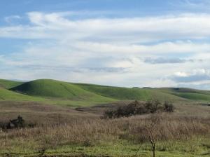 San Ramon Green 1